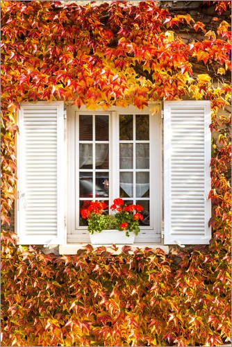 Posterlounge Cuadro de Aluminio 20 x 30 cm: Window with Autumn Leaves de Matteo Colombo
