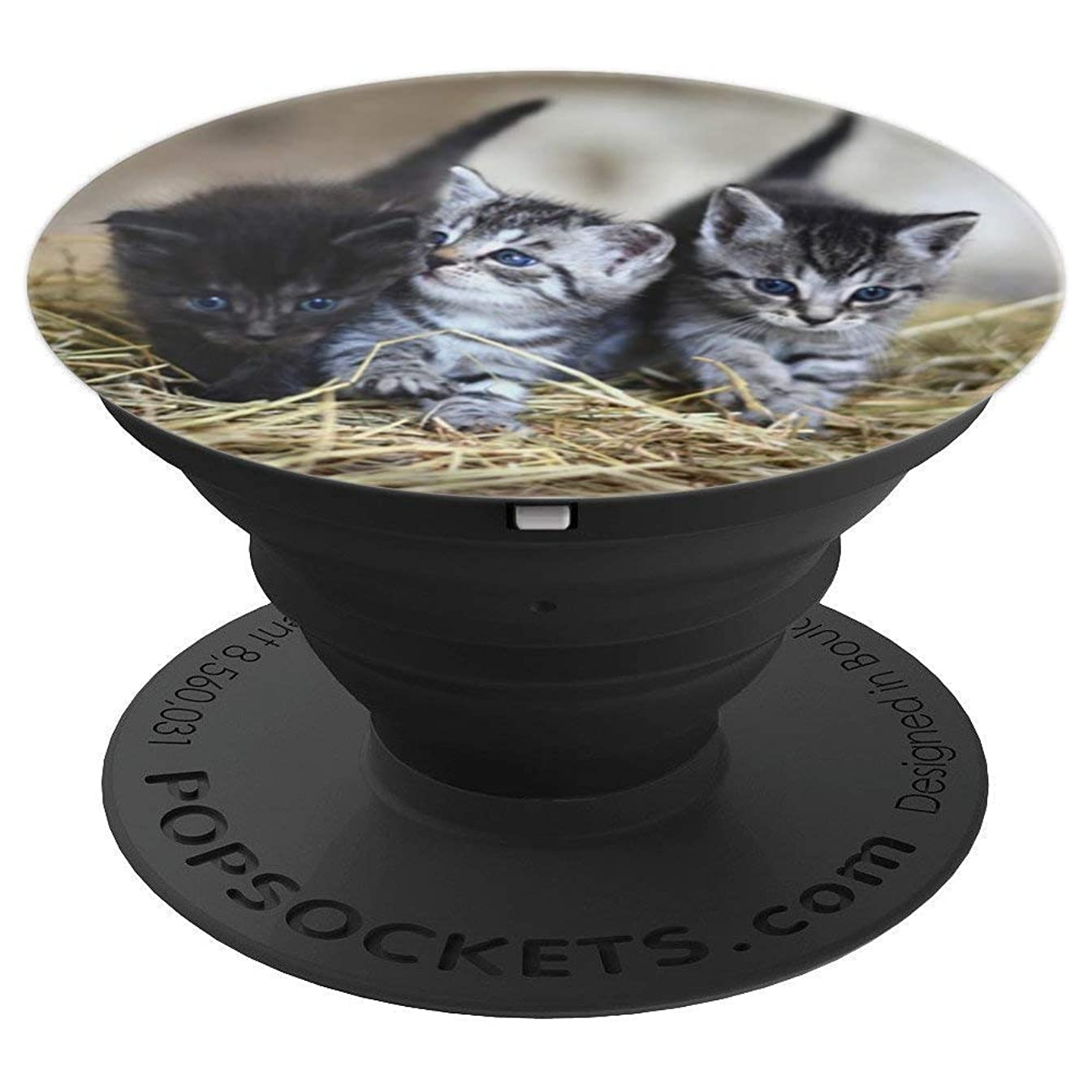 Cute Kittens Cat Lovers Barn Cats Straw - PopSockets Grip and Stand for Phones and Tablets