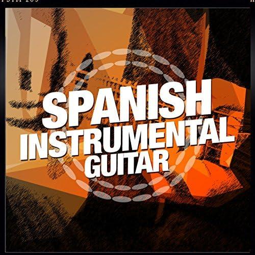 Rumbas de España & Instrumental Guitar Masters