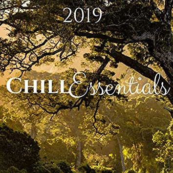 Chill Essentials 2019 - Ambient Music with Nature Sounds