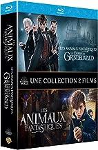 Animaux fantastiques : Les Crimes de Grindelwald