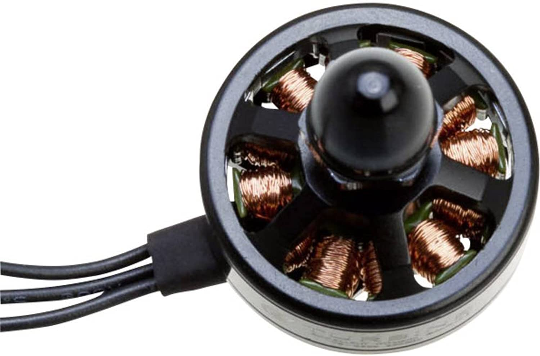 Motore Robitronic ETB-MR1 2300 gmin per Volt