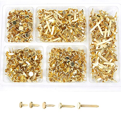 Mini Brads – 500-Pieces Scrapbooking Brads, Paper Fasteners, Steel Brad Fasteners, Gold, 5 Assorted Sizes