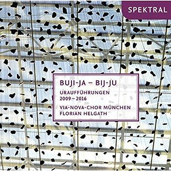 Schanderl, Buchenberg & Zink: Buji-Ja Bij-Ju