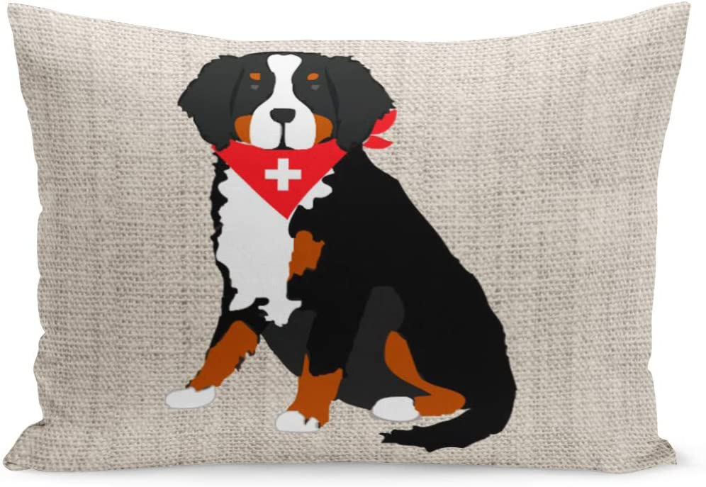 Aikul Throw Pillow Cover Berner Bernese Mountain Dog Swiss Tan Lover Pillow Case Cushion Cover Lumbar Pillowcase Decoration For Couch Sofa Bed Car Queen Size 20 X 30 Inchs Home