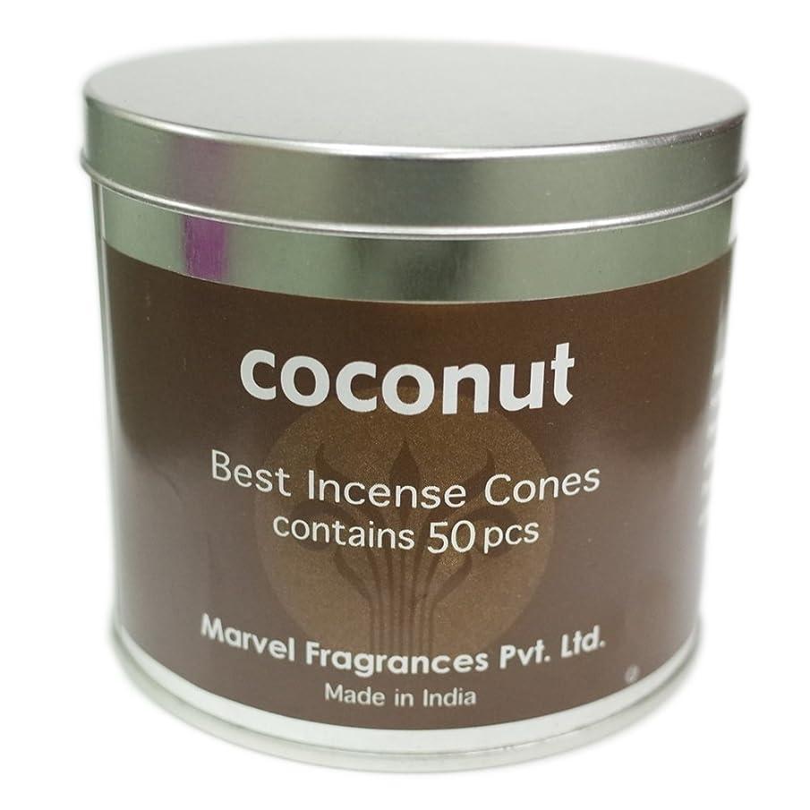 現代の体細胞日の出コーン ココナッツ
