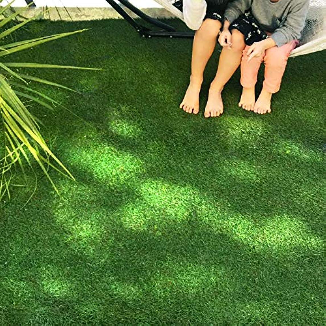 意見ボイラー役員人工芝 ハイグレード リアル 人工芝 ロールタイプ 芝丈30mm 2m×5m