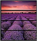 Wallario Möbelfolie/Aufkleber, geeignet für IKEA Malm Kommode - Lavendelfeld unter rotem Himmel mit 4 Schubfächern