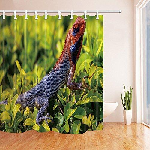 CDHBH Safari Duschvorhang für Badezimmer, Wilde Tiere Eidechse auf Grün, aus Polyester-Stoff, wasserdicht, Duschvorhang Badezimmer Duschvorhang Haken inklusive 71x 71in