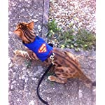 Cat Harness Mynwood Cat Jacket/Harness Superman Adult Cat – Escape Proof