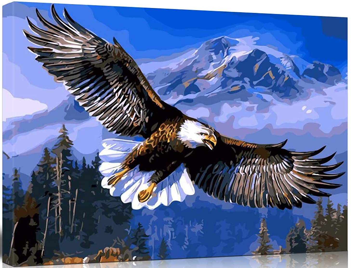 SHUAXIN [Wooden Framed] DIY Oil Painting, Paint by Number Kits Home Decor Wall Pic Value Gift- Flying Eagle 16X20 Inch