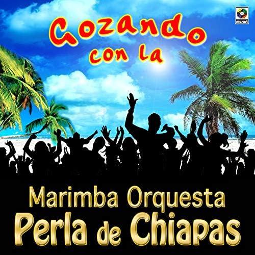 Marimba Orquesta Perla De Chiapas