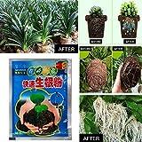 Zoom IMG-1 ferry bonsai plant rapid growth
