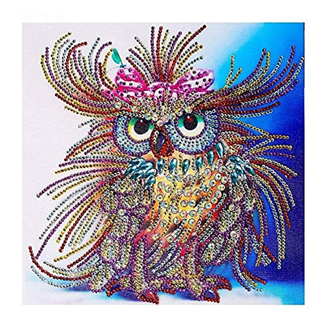 HuaCan Diamond Painting Kits for Adults DIY 5D Special Shape Partial Drill Crystal Rhinestone Embroidery Pictures Arts Craft for Home Wall Decor Owl C 24x24cm