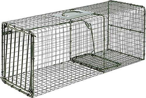 Duke Traps Heavy Duty Large Cage Trap