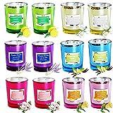 ZHANG Velas perfumadas, Paquete de 12 Velas de aromaterapia Set Velas de SOYA Natural Velas hogar, Velas para aliviar el estrés Set Best Gifts