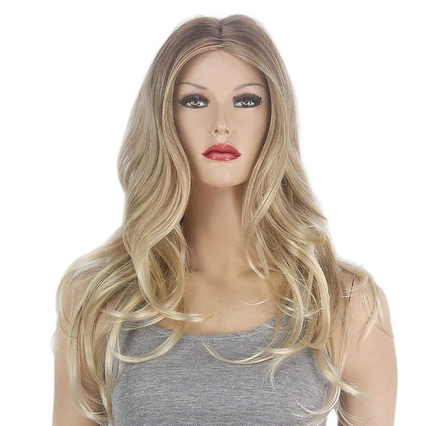 理解する少数彼らはBOBIDYEE 女性のビッグウェーブライトゴールドの長い巻き毛の人工毛シミュレーションかつら合成髪のレースのかつらロールプレイングかつら (色 : Light blonde)