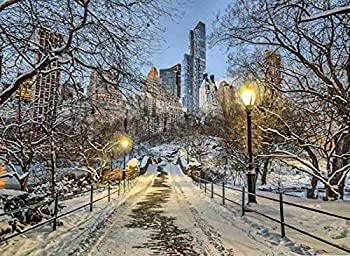 Qoalips Snow Scenery 5D Diamond Painting Kits Central Park New York City Winter Painting Arts Craft Canvas Full Drill Cross Stitch 20x24 Inch