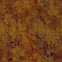 GladsBuy古代壁10' x 10'デジタル印刷写真バックドロップテーマ壁背景yha-314