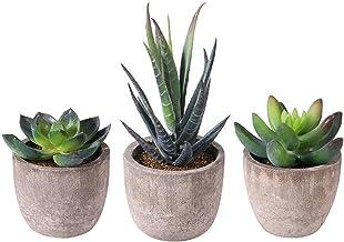 3 stks Kunstmatige succulent planten Mini kunstmatige bonsai nep met potten decoratieve bal planten kunstmatige bloem mini...