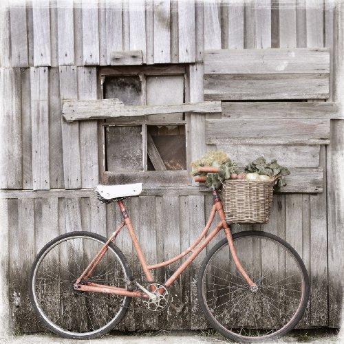 Eurographics EC-DT8002 Eco Chic Vintage Bicicletas de monta�
