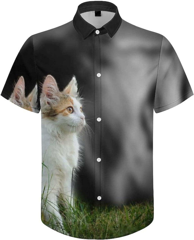 Mens Button Down Shirt Kitten Roaring Lion Casual Summer Beach Shirts Tops