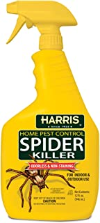 Best spider insecticide spray Reviews