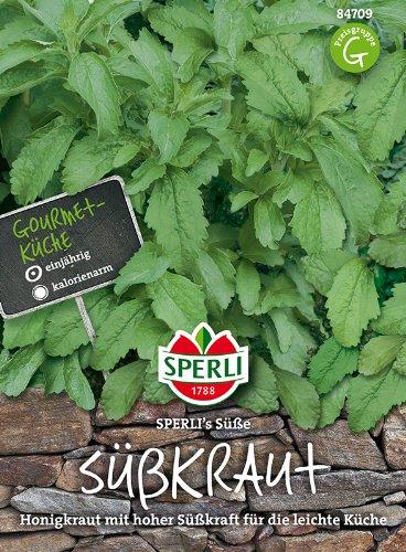 Honigkraut (Stevia)