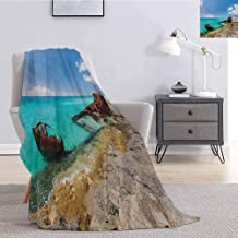 Shipwreck Luxury Special Grade Blanket Ship Wreckage on a Peaceful Rock Shore Natural Wonder Under Idyllic Sky Image Multi-Purpose use for Sofas etc. W80 by L60 Inch Multicolor
