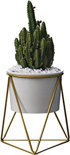 Y&M Planter Pots Indoor,6 inch Modern Plants and Planters Garden White Ceramic Round Bowl with Metal Stand for Succulent P...