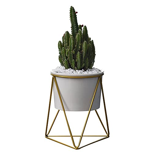 Y&M Planter Pots Indoor,6 inch Modern Plants and Planters Garden White Ceramic Round Bowl with Metal Stand for Succulent Planter Cactus (White + Gold)