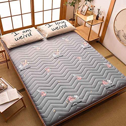 Futon Mattress, Japanese Floor Mattress Pad Thicken Tatami Mat Sleeping Foldable Roll Up Mattress Mat Breathable Durable Mattress, Variety of Options, Available in All Seasons/C / 100 * 200cm