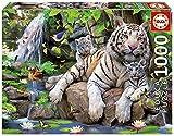 Educa - Tigres Blancos de Bengala Puzzle, 1000 Piezas, Multicolor, 1.000 (14808)