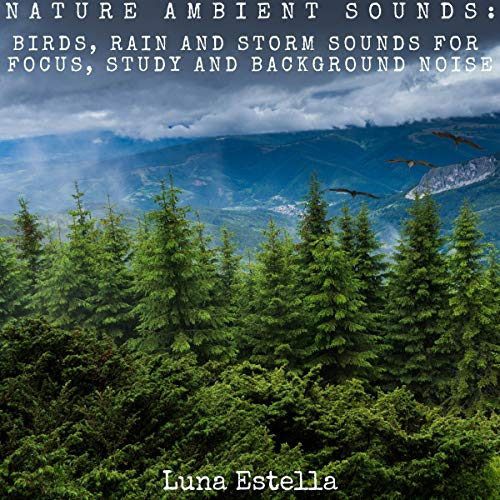 Nature Ambient Sounds: Birds, Rain and Storm Sounds for Focus, Study and Background Noise