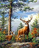 5D Diamond Painting Kits for Adults Full Drill Sika Deer Rhinestone Embroidery Dotz Craft Cross Stich Gift Home Decor Large Size 40x50cm/16x20inch