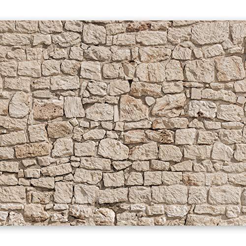 murando Fototapete Steinoptik 400x280 cm Vlies Tapeten Wandtapete XXL Moderne Wanddeko Design Wand Dekoration Wohnzimmer Schlafzimmer Büro Flur Steintapete beige Steine Mauer 3D f-B-0061-a-a