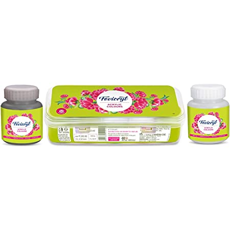 Pidilite Fevicryl Acrylic Sunflower Kit with Acrylic Colours for Regular Artists (Black and White, 10 x 15 ml) -100 ml Each