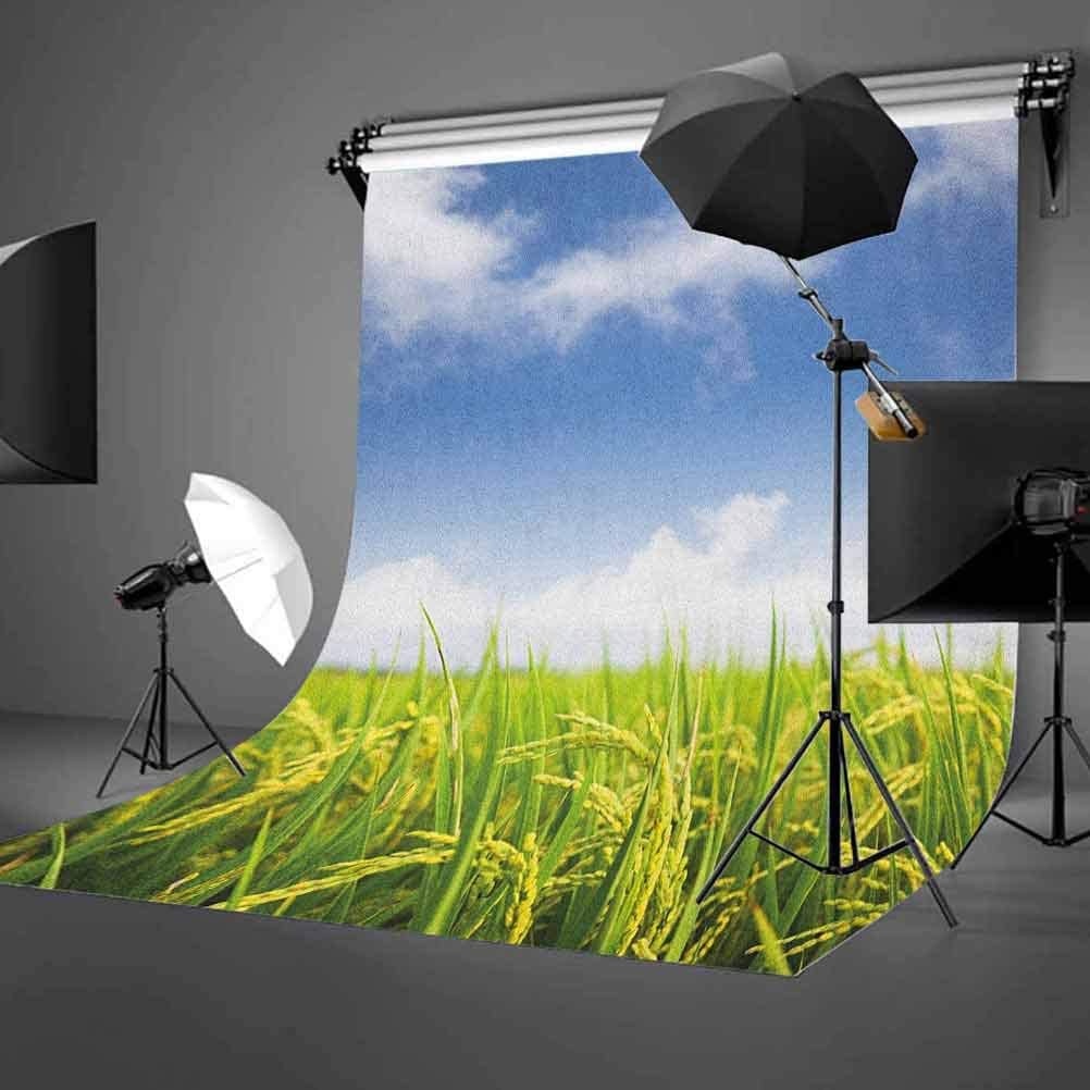 8x12 FT Kids Vinyl Photography Backdrop,Cartoon Fire Dragons Silly Expressions Colorful Flying Fantasy Fairy Tale Characters Background for Photo Backdrop Baby Newborn Photo Studio Props