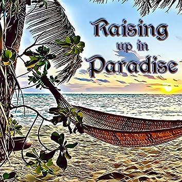Raising up in Paradise