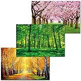GREAT ART 3er Set XXL Poster – Saisonale Wälder –