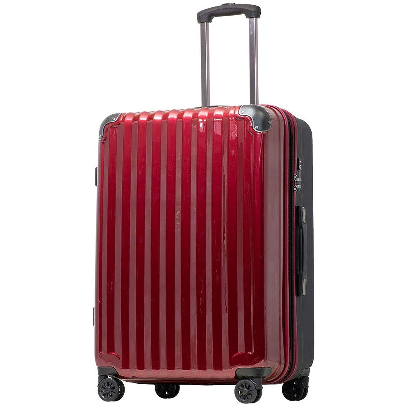 スポーツ庭園心配する【JP Design】スーツケース キャリーケース キャリーバッグ 超軽量 tsaロック 二枚仕切り 容量アップ 拡張機能付 ダブルキャスター8輪(機内持込~LL 全4サイズ)ハードキャリー ファスナー