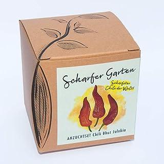 Geschenk-AnzuchtsetScharfer Garten mit Samen der schärfsten Chili der Welt