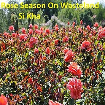Rose Season on Wasteland