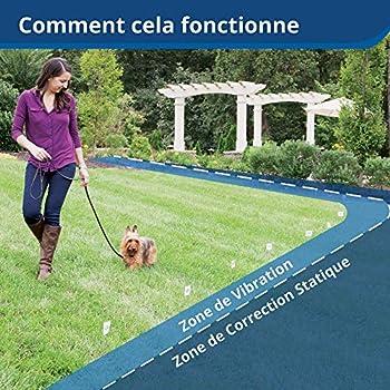 PetSafe - Système de Clôture Anti-fugue avec collier et Fil pour Grand Chien ou Chien Têtu de plus de 4 kg - Tous types de terrains (jardin, enclos..) - Imperméable - Facile à Installer