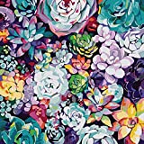 Paint by Numbers for Adults and Kids Beginner,Painting by Number Kits On Canvas,Without Frame DIY Color Succulents Oil Painting Acrylic Paints, Home Wall Decor16x16 Inch Canvas