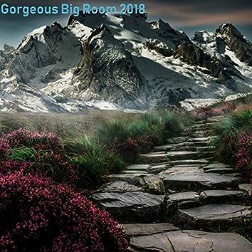 Gorgeous Big Room 2018 Pt.003