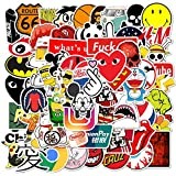 Cool Brand Stickers 100 Pack Decals for Laptop Computer Skateboard Water Bottles Car Teens Sticker