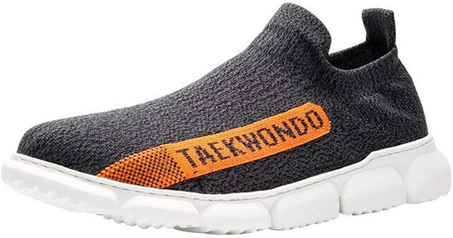 Men Walking shoes Breathable Fashion Mesh Sneakers Slip On Trainers Running shoes Comfortable Loafers Footwear
