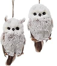 Kurt Adler 6-Inch Owl Ornament Set of 2, 2 Piece