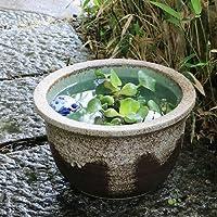 信楽焼10号灰釉流しすいれん鉢(ボウフラ)